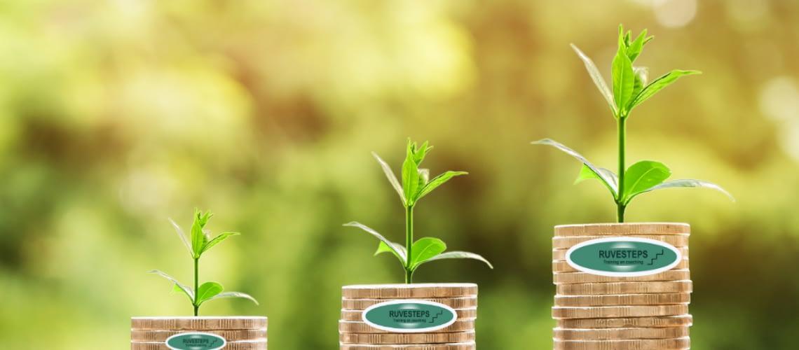 Ruvesteps-business-groei